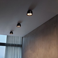 Flos Wan Ceiling/Wall Lamp