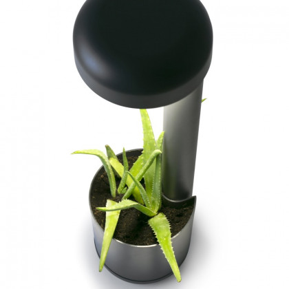 Faro Grow Beacon